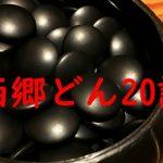 大河ドラマ「西郷どん」第20話のあらすじ【ネタバレ注意】「正助の黒い石」